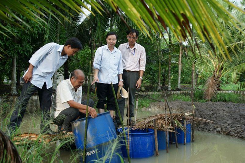 Kỹ thuật nuôi lươn trong can nhựa, ống nhựa hoặc thùng xốp