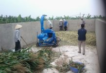 Giá máy băm cỏ các loại. Máy băm cỏ voi, máy băm mini, công suất lớn,...