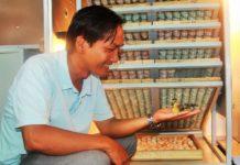 Hiệu quả từ máy ấp trứng gia cầm. Giá thành của những loại máy ấp trứng