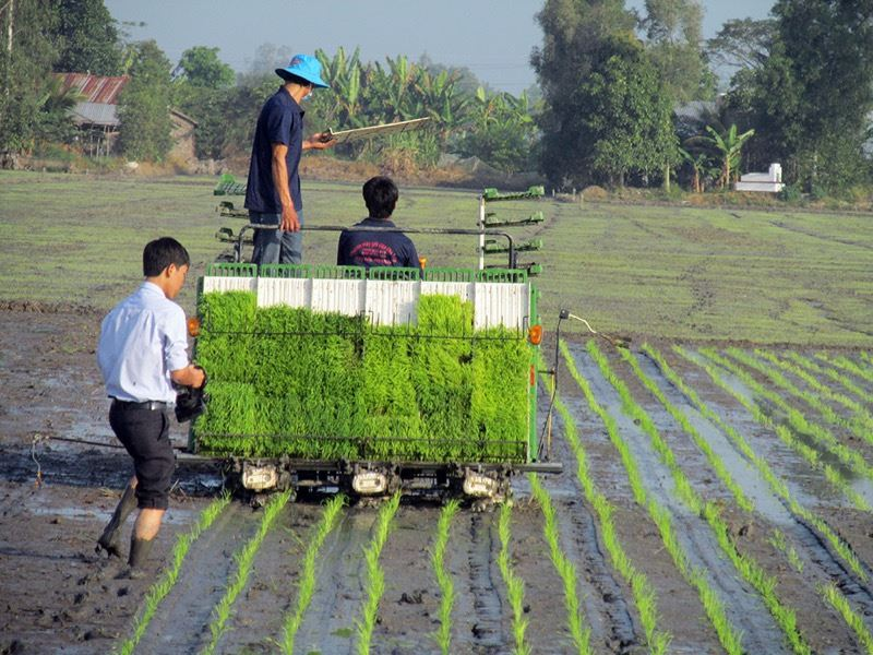 Bảng giá máy cấy lúa Kubota. Các loại máy cấy lúa tốt nhất của Kubota