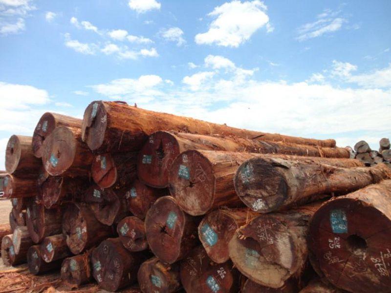 Cách tính khối gỗ. Cách tính mét khối (m³) gỗ tròn và gỗ vuông (chữ nhật)