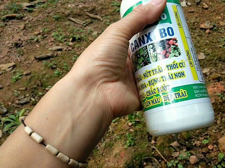 Giá thuốc chống rụng hoa, quả non. Mua bán thuốc chống rụng quả